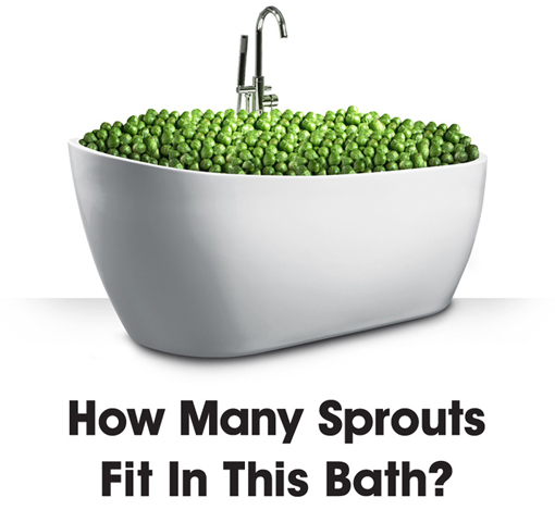 Q. How many love 'em or hate 'em sprouts will Santa's elves manage to squeeze into this beautiful bath?